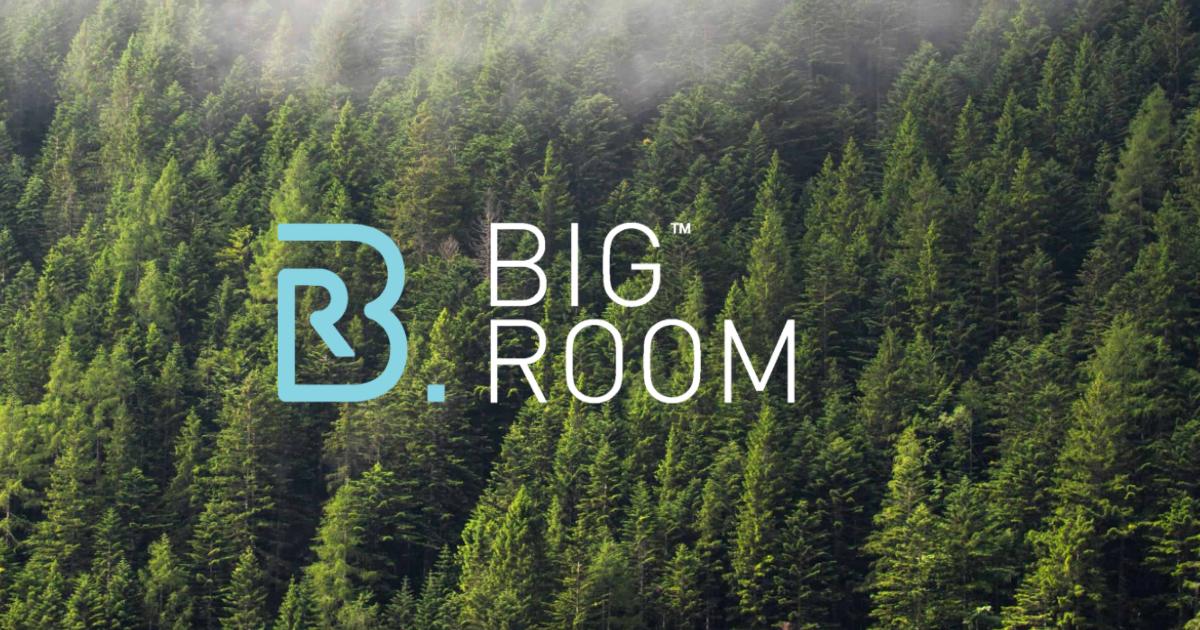 Big Room, the .eco Registry